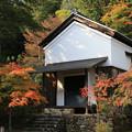 Photos: 宝 蔵