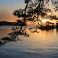 写真: 松の島