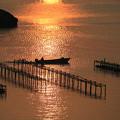 輝きの松島湾