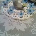 写真: ブルースターと小鳥