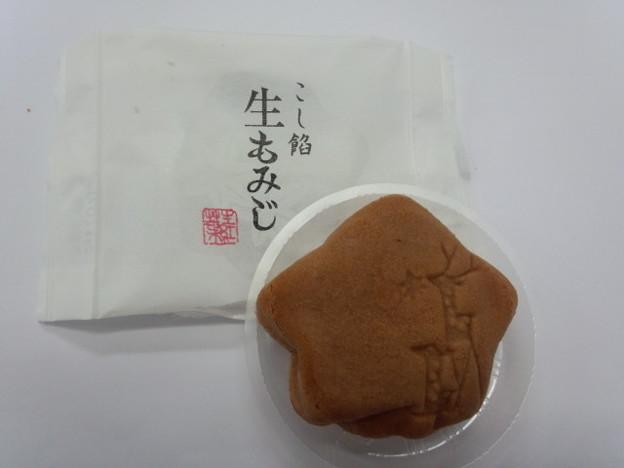 Photos: 生もみじ