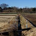 Photos: 冬の用水路_16-50_K5IIs