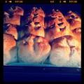 写真: シュガーレーズンパン