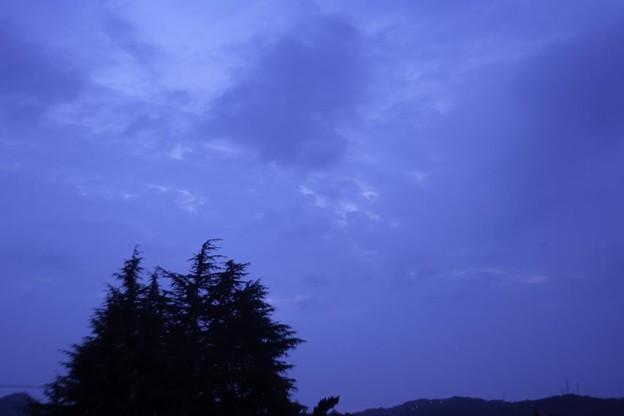 Photos: 曇り空の楽しみ^^