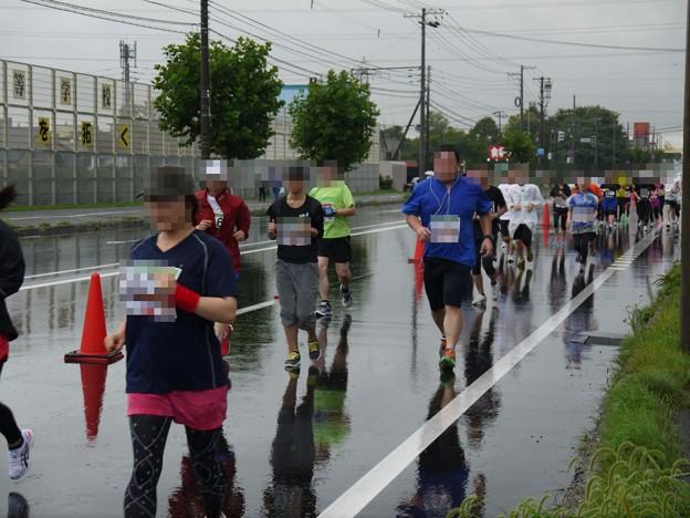 写真: たきかわコスモスマラソン