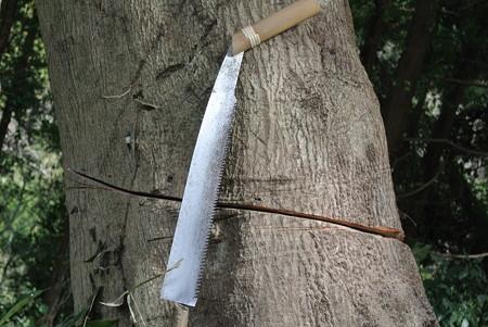 防風林伐採に使うノコギリ