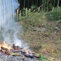 Photos: 竹の焼却