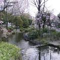 写真: 20080329久屋大通公園 (2)