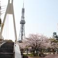 写真: 20100406テレビ塔