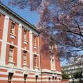 写真: 20110406市政資料館