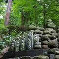 写真: 森の仏様