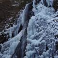 写真: 滴る白猪の氷瀑