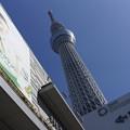 写真: 東京スカイツリー #320