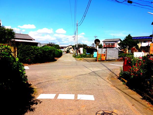 Photos: 小山17