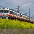 写真: 125周年列車(Ver2) With 菜の花