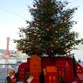 港のクリスマスツリー