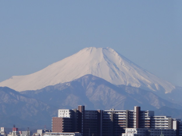 写真: 東伏見より富士山