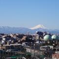 写真: 富士山