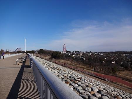 多摩湖堤防から西武遊園地