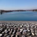 写真: 狭山湖堤防