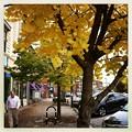 Maine Street 10-15-12