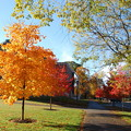 The College in an Autumn Morning 10-21-12