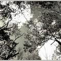 写真: The Clouds in the Sky B&W 10-21-12