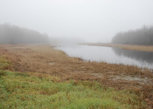 Foggy Water 10-27-12