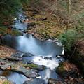 Photos: Downstream 10-27-12