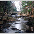 Vaughan Brook 10-27-12