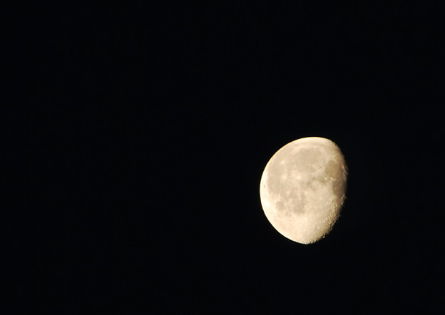 Easter Morning Moon 3-31-13