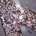 Slates, Gravels and Petals 5-5-13