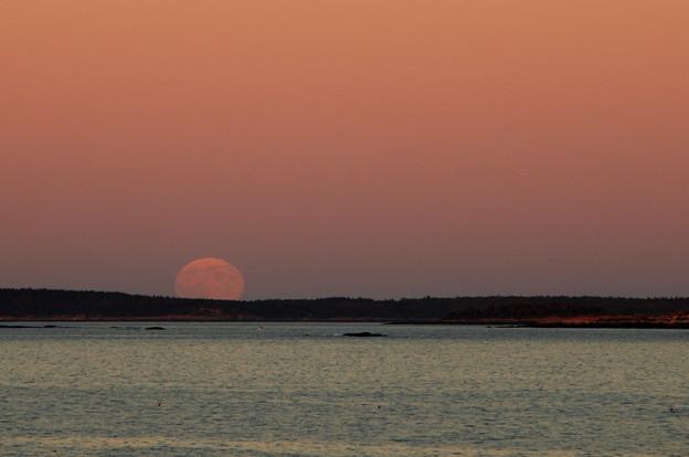 Photos: Harvest Moon Rising 9-19-13