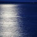 写真: Dark Blue 9-19-13