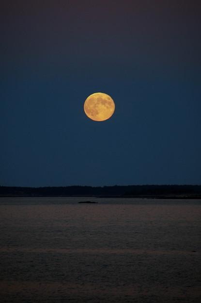 Photos: Harvest Moon and the Ocean 9-19-13