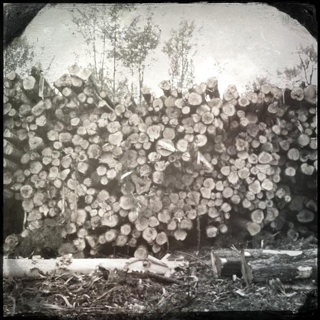 Logging in Maine C. 1860(嘘)9-2-13