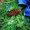 写真: The Wreath 12-8-13