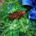 写真: The Wreath 12-8-13