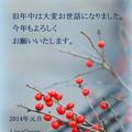 写真: New Year 2014