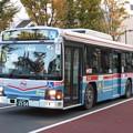 Photos: 20131123 (15)