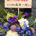 e:cho 恵比寿LIVE GATE ライブ AUD74C8454