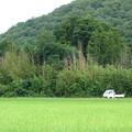 軽トラのある風景