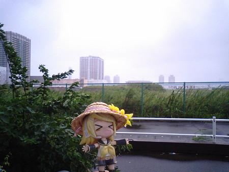 リン:「暴風雨きぃやぁぁぁぁぁぁぁ!!!wwwwwwwww」