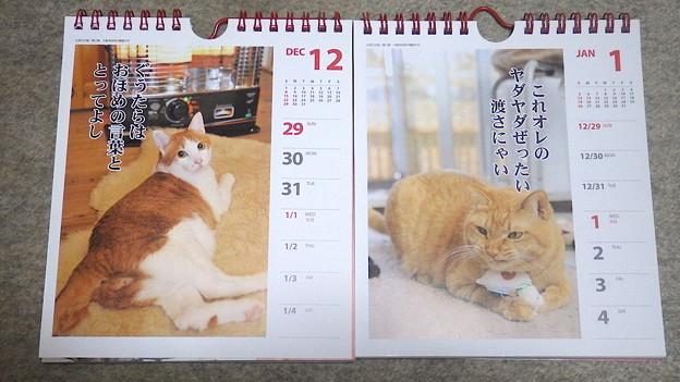140106 猫川柳カレンダー新旧
