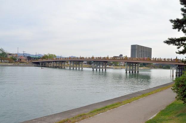 2012_1105_132149_瀬田の唐橋