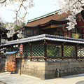 Photos: 桜咲く御香宮神社 京都・伏見