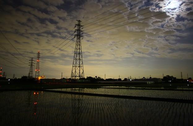 月夜の田んぼ