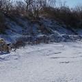 Photos: ちょっとだけ 雪