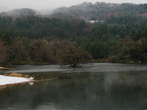 冬ざれの池