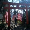 Photos: 坂下神社